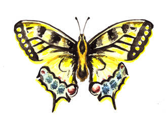 Watercolor Butterfly by erika-lancaster85