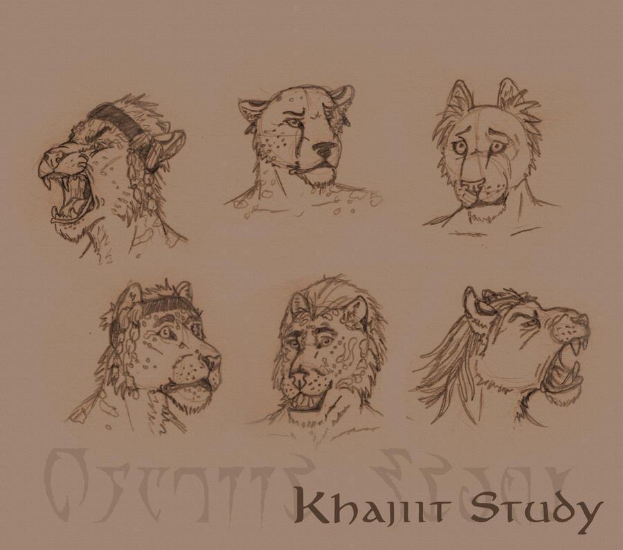 how to draw a khajiit