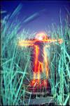 Redman in greengrass
