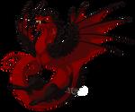 Dragon 11