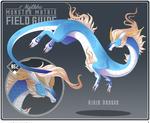 062 - Kirin Dragon