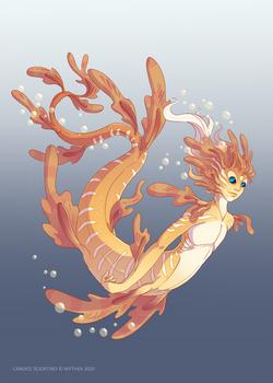 Leafy Sea Dragon ~ 28