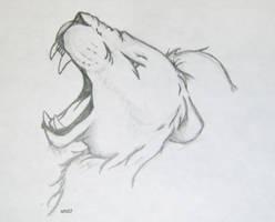 Lion Sketch by sefkobayashi