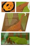 Pollinators of Tecciztecatl: Page 6
