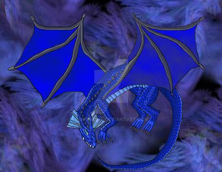 +Midnight Dragon+
