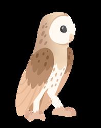 Barn Owl by FIamango
