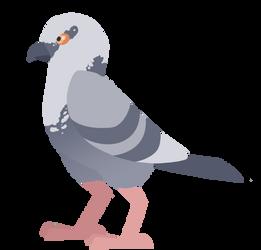 Pigeon by FIamango