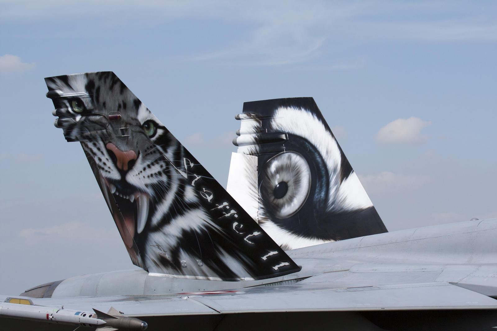 F-18 Tiger Meet Livery by Rikkubeauty on DeviantArt