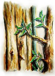 Natural in Watercolor