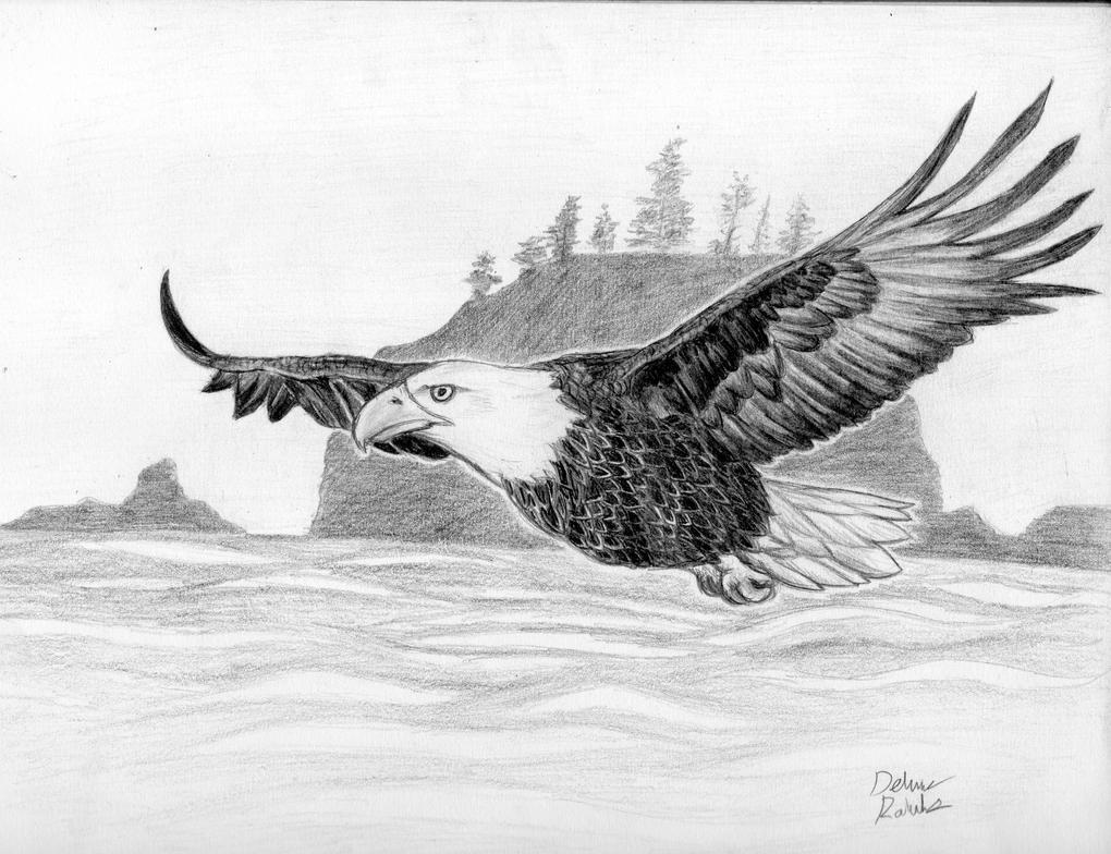 Eagle by PankcakeWizard