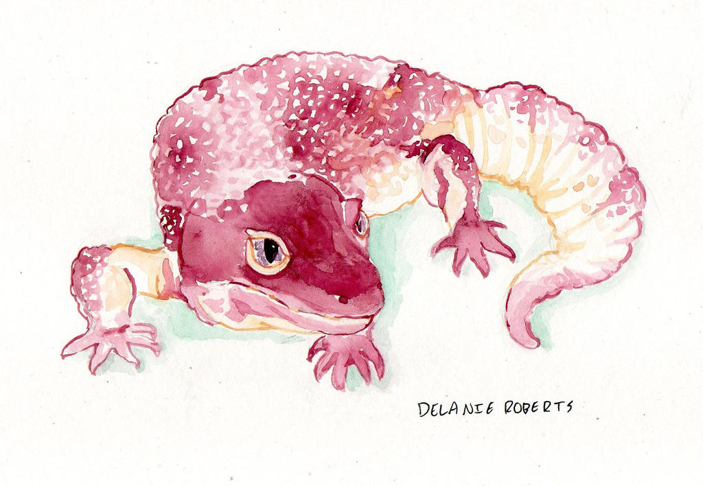 Leopard Gecko by PankcakeWizard