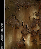 Coloured Rust 1 by exchanged-stock