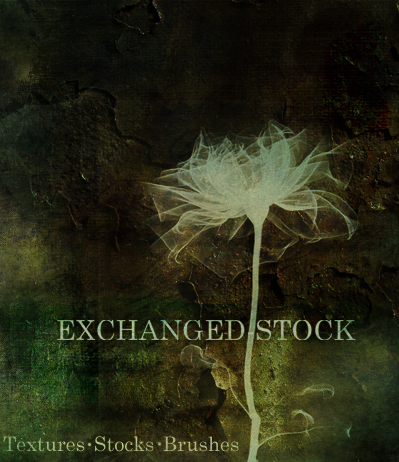 exchanged-stock's Profile Picture