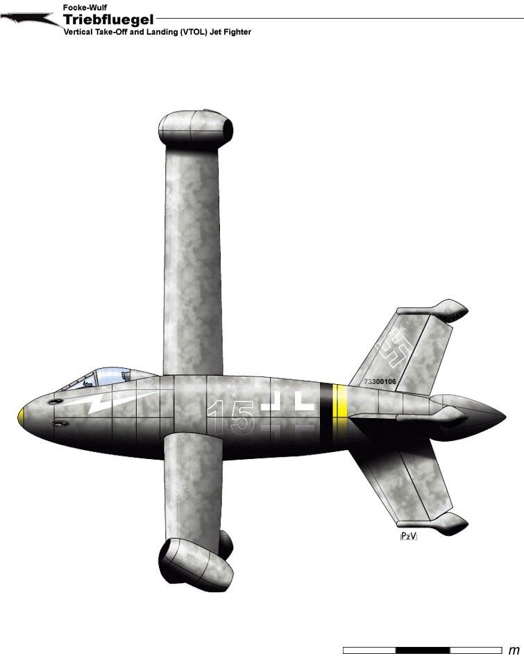 Fw Triebflugel by nicksikh