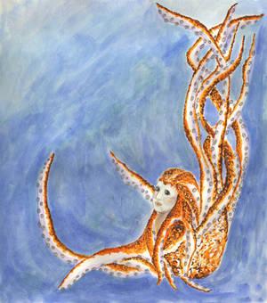The Cephalopod Maid