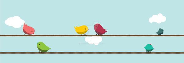 love birds by bd670816