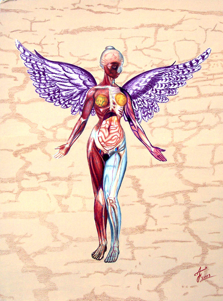 Nirvana In Utero By Captain E0 On Deviantart