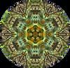 Fractal Cactus MandalaSpinoso2