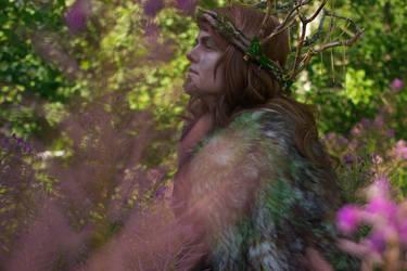 Finnish mythology - Tapio by Emery-Dragonfly