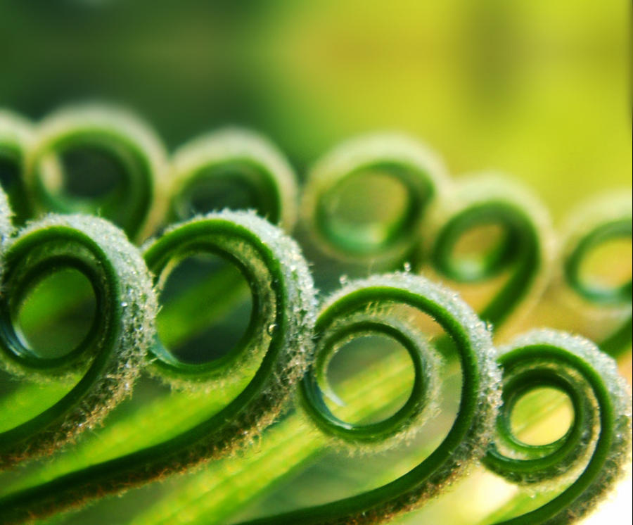 Spirals by Birthstone