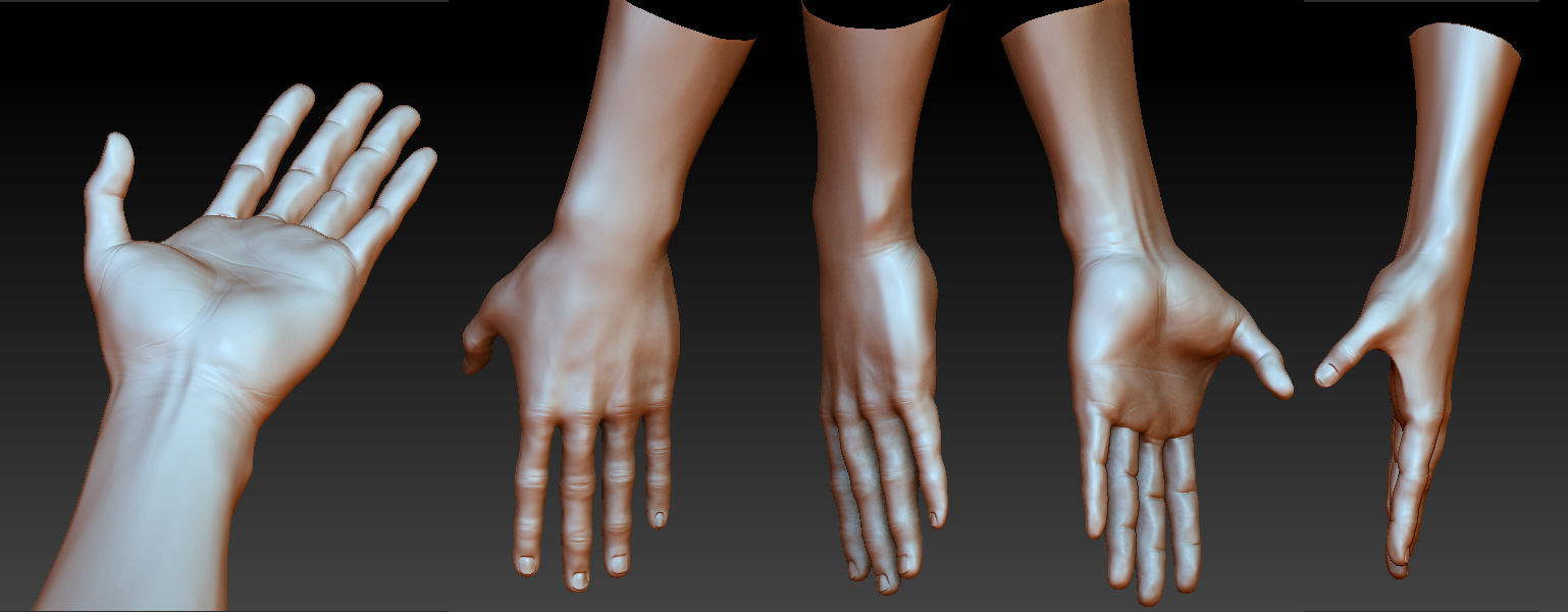 Anatomy Practice - Hands by Art-by-Smitty on DeviantArt