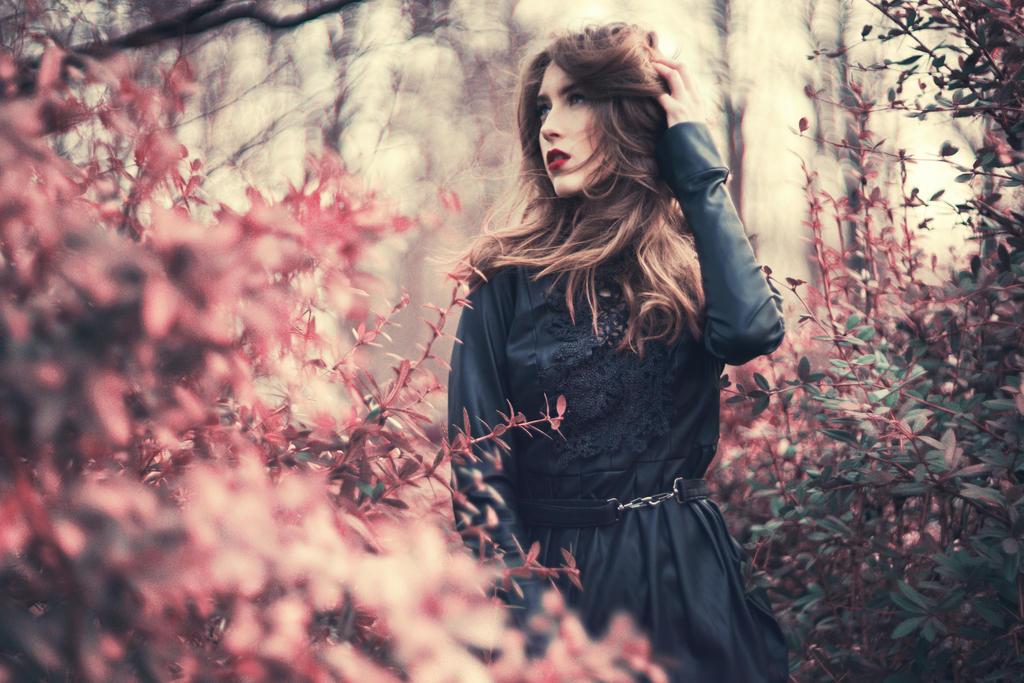 autumn by akModel