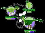 Fakemon: Grass Starter