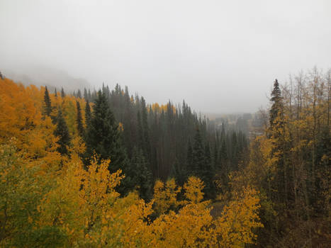 Cumbres and Toltec Scenic Railroad 11