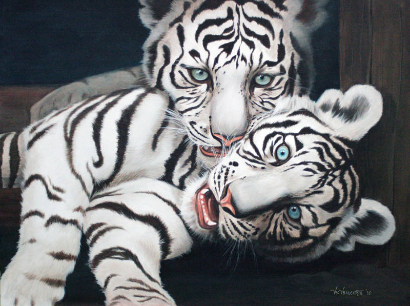 "White Tiger ""original acrylic on canvas paint by vicvill ..."