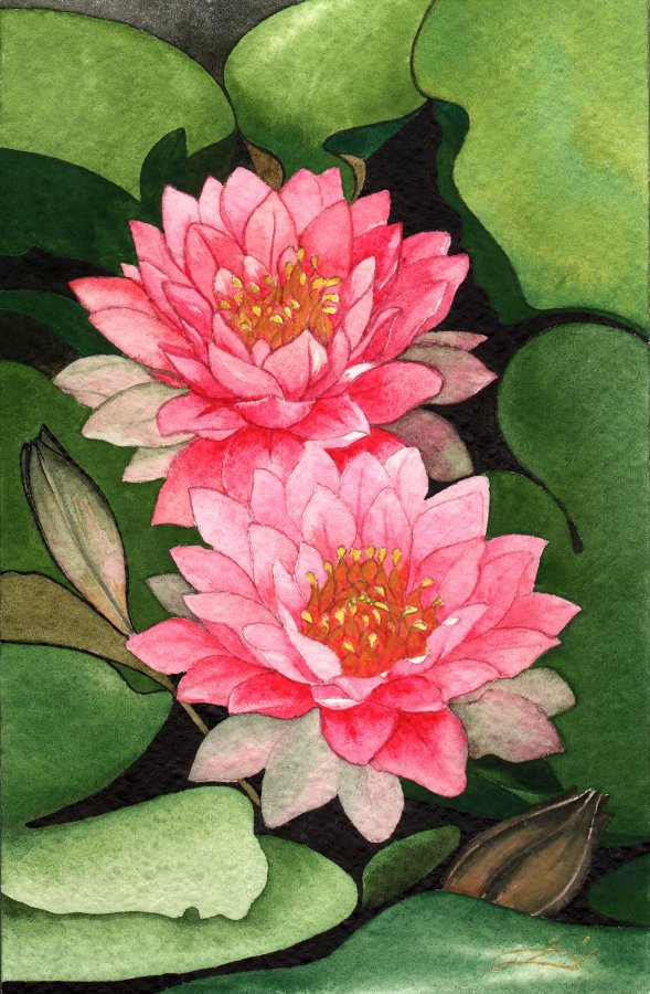 Pink lotus flower by zinka d on deviantart pink lotus flower by zinka d mightylinksfo