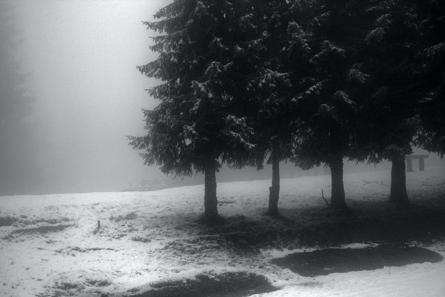 fog by PerfectMistake1