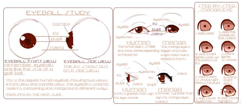 Understanding The Eye by iingo