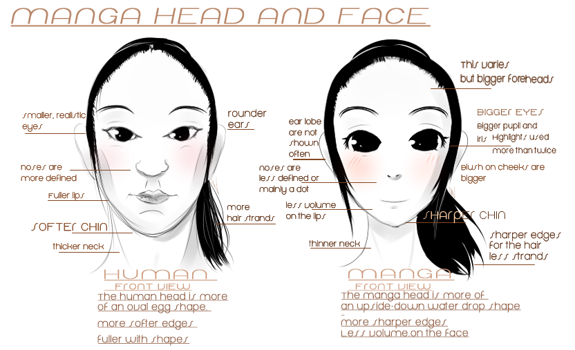 Ma Project Edu Manga Head And Face Guide By Iingo On Deviantart