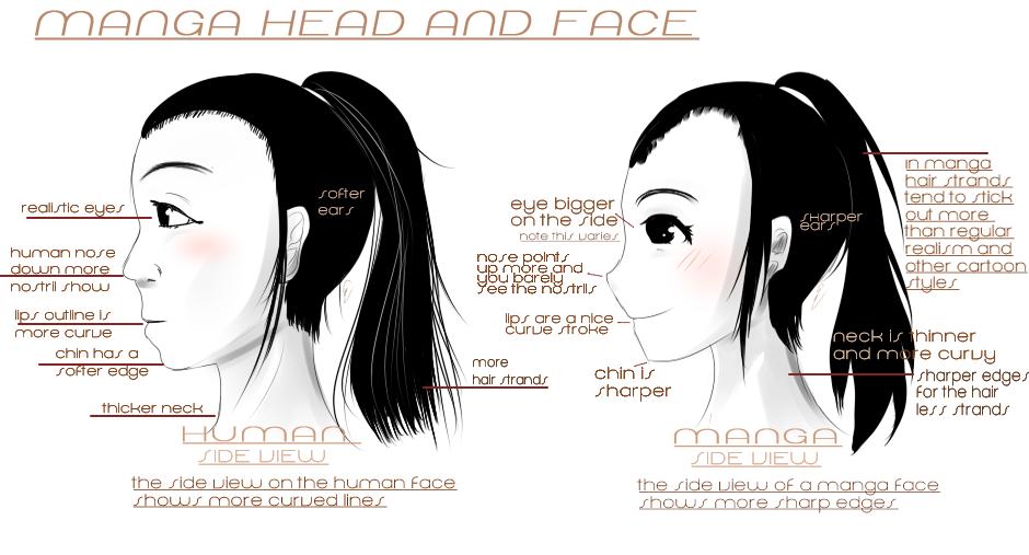 Head Side View by iingo