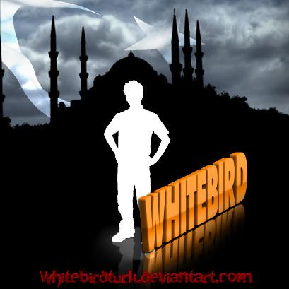 WhiTeBiRdTurk's Profile Picture