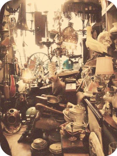 Antics by Jazzersighs