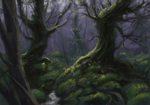 Woods, sketch