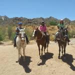 South Mountain by Horseback