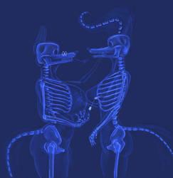 X-ray V-Day by DarkAldebaran