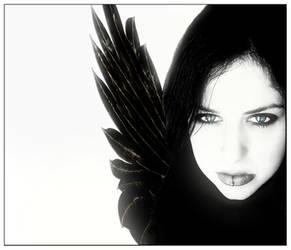 Light of the Black Fairie