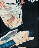 Kurosaki Ichigo, 007. by Howlling