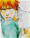 Kurosaki Ichigo, 011. by Howlling