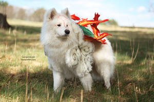 OKAMI : Amaterasu by EnchantedCupcake