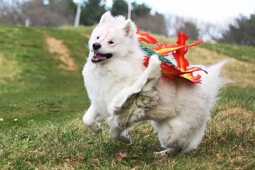 OKAMI : Happy Go Lucky