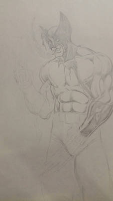 unfinished wolverine