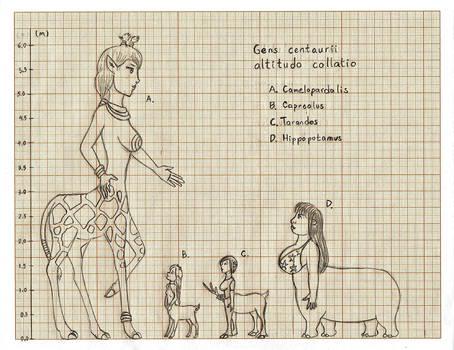 Centaurides height chart