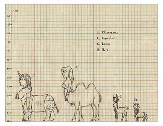 Centaurides height chart 02