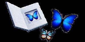 MMD - Butterflies DL