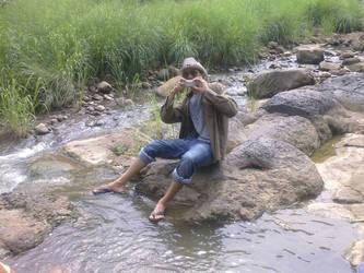 Into the wild (Mohit kumar rao)  by mohitkumarrao