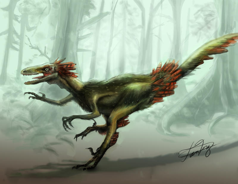 Feathered Troodon by FutureAesthetic